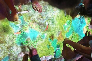 沙盘互动投影 - 少儿教育 - 昆虫世界 - 维莎道卡数字影像制作有限公司