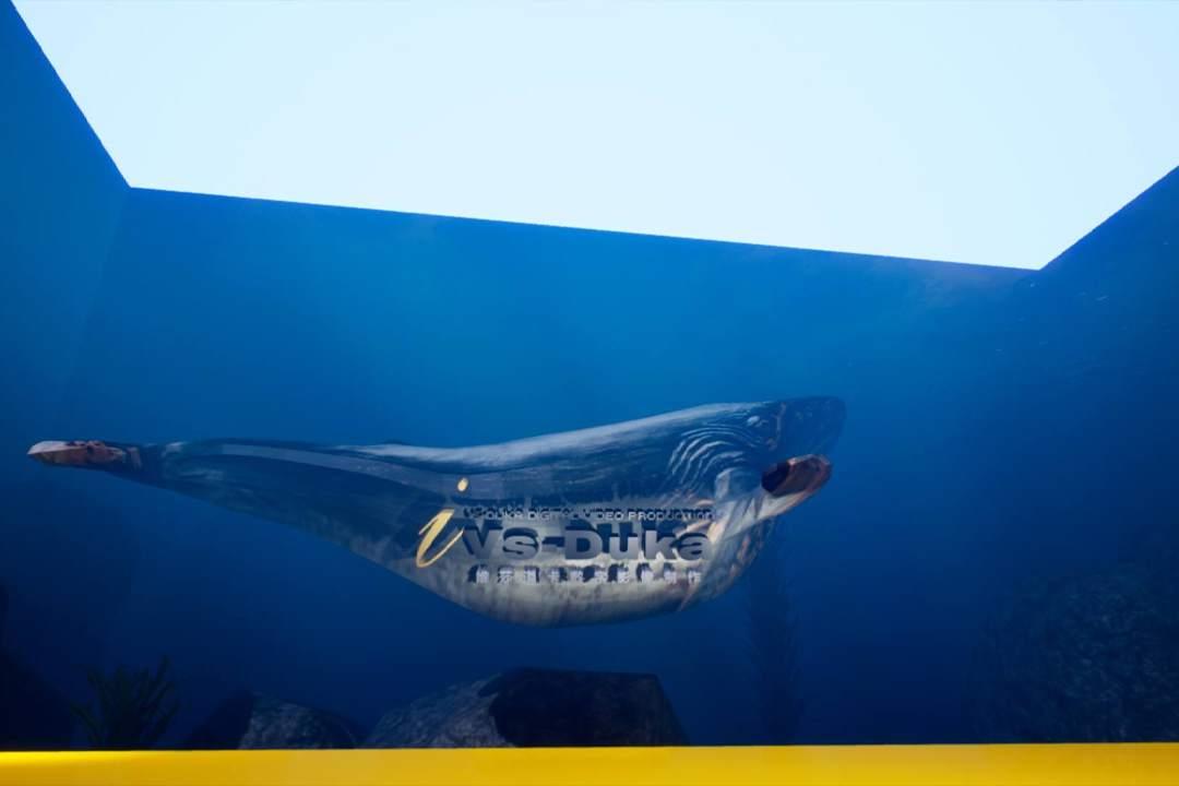 墙面互动投影 - 场景虚拟 - 鲸鱼岛屿 - 维莎道卡数字影像制作有限公司